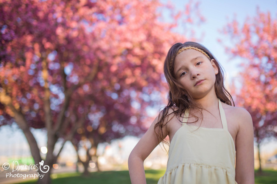 Cherry Blossoms Denver Family Photographer (2)