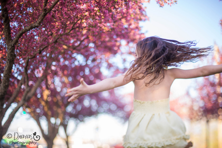 Cherry Blossoms Denver Family Photographer (6)